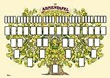 Ahnentafel in Baumform 60 x 42 cm (A2) Grossformat mit viel Platz. Lieferung in stabiler Rolle